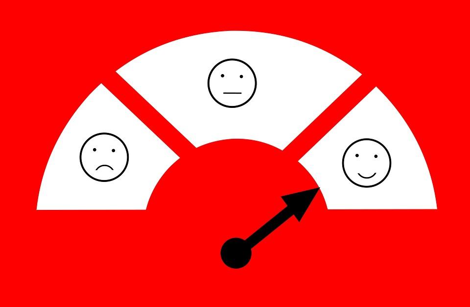 FELICITA'. i falsi miti che ci rendono infelici